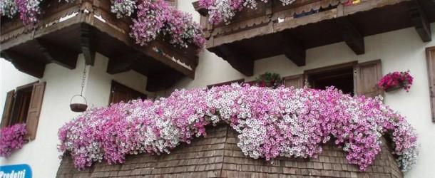 Evlerin Keyifli Köşesi Balkonlar