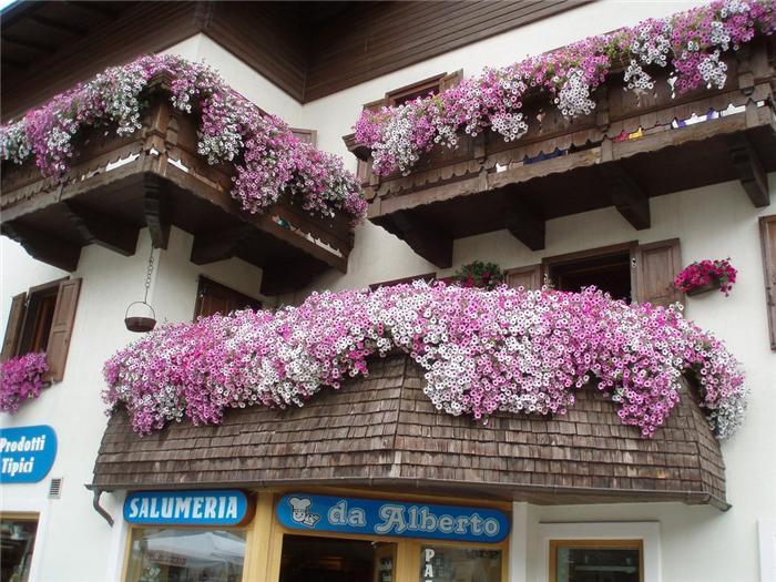 balkon_dekorasyonu_1