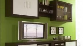 Televizyon Ve Duvarların Mükemmel Dostluğu:Duvar Üniteleri