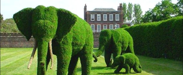 Peyzaj işçiliği ile mükemmel bahçeler